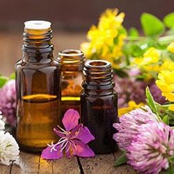 Semana da Aromaterapia Andre Ferraz Aromaterapeuta