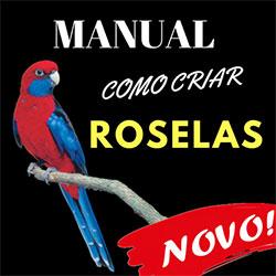Manual Como Criar Roselas