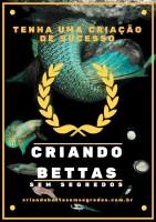 Livro Criando Bettas sem Segredos