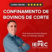 Curso Online de Confinamento de Bovinos